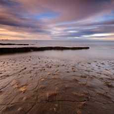 Fossil Beach