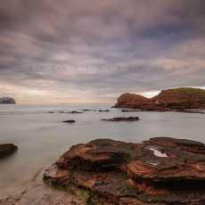 The Gegan And Bass Rock